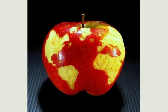 pomme-terre
